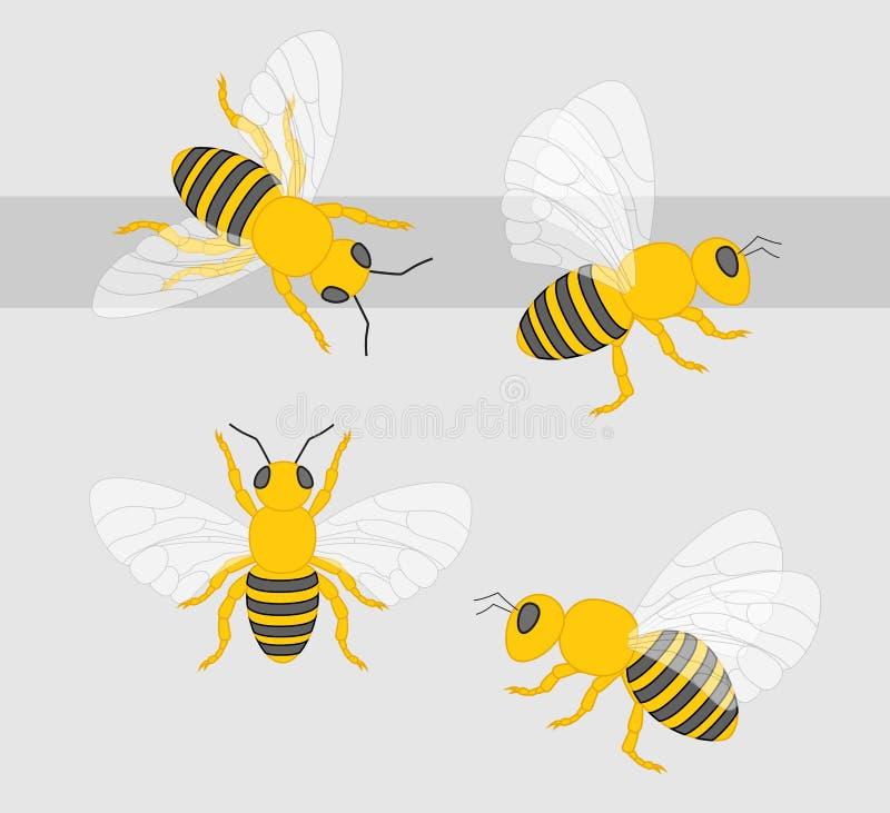 Διάνυσμα μελισσών διανυσματική απεικόνιση