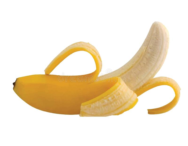 Διάνυσμα μιας μπανάνας Συρμένη χέρι μπανάνα στοκ φωτογραφία