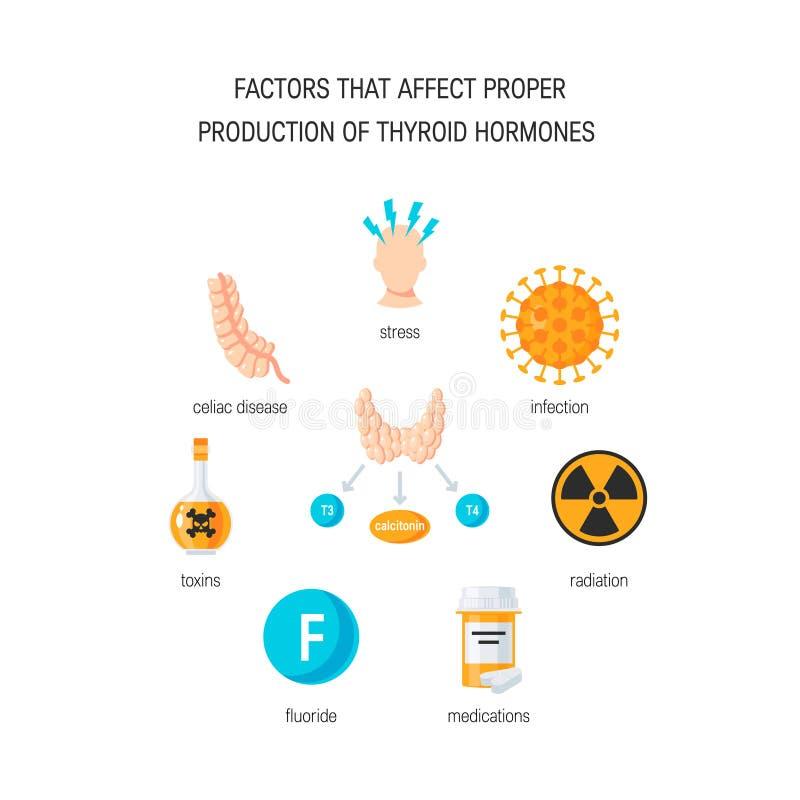 Διάνυσμα ορμονών θυροειδή διανυσματική απεικόνιση