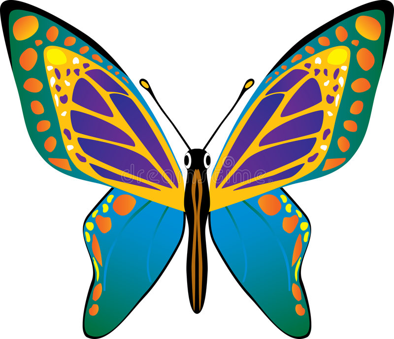 διάνυσμα πεταλούδων στοκ φωτογραφίες με δικαίωμα ελεύθερης χρήσης