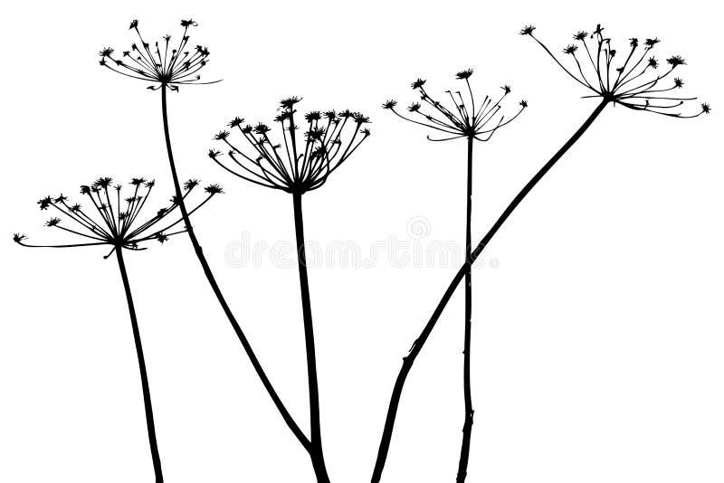 διάνυσμα σκιαγραφιών φυτών ελεύθερη απεικόνιση δικαιώματος