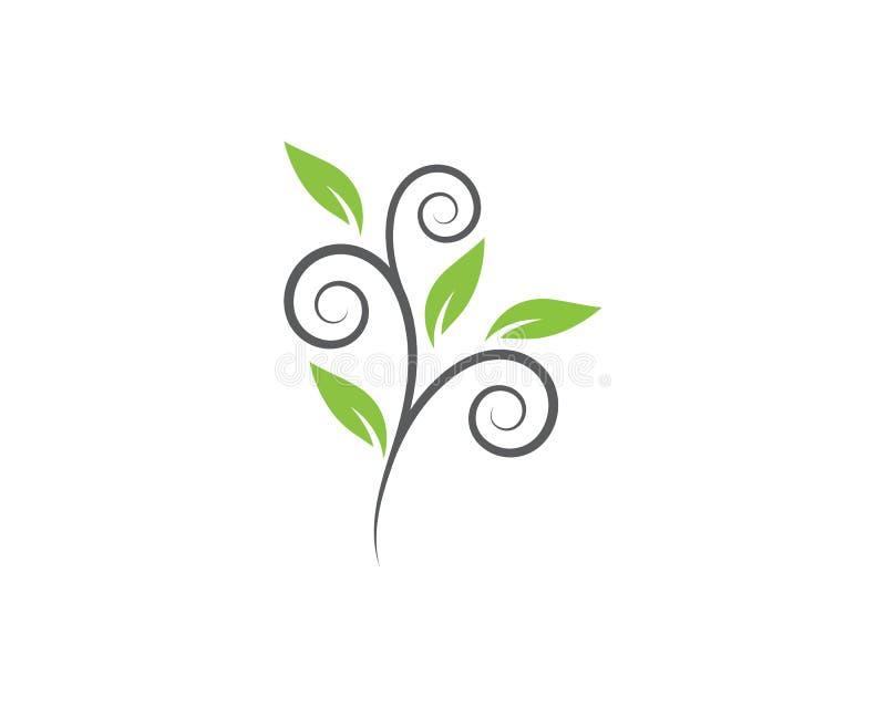 Διάνυσμα στοιχείων φύσης οικολογίας φύλλων δέντρων απεικόνιση αποθεμάτων