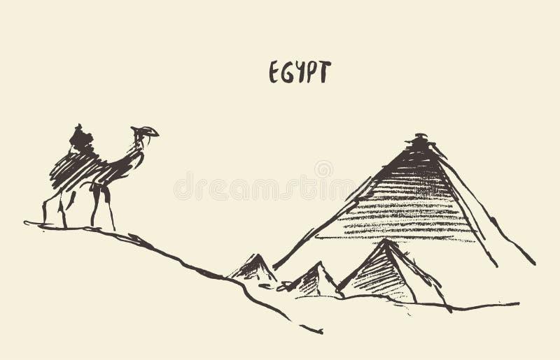 Διάνυσμα Giza Κάιρο Αίγυπτος καμηλών πυραμίδων διανυσματική απεικόνιση