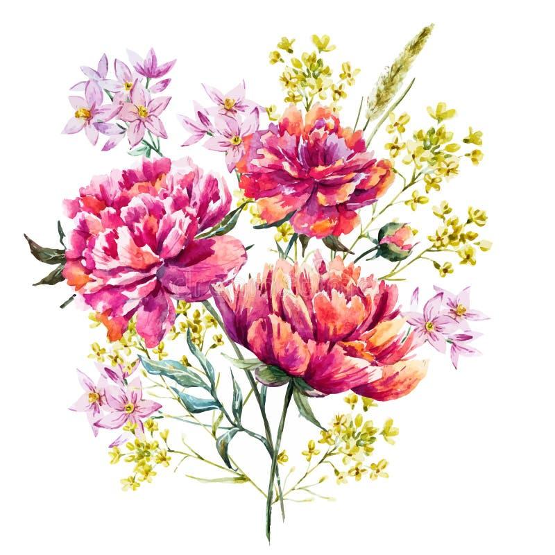 Διάνυσμα Watercolor peony απεικόνιση αποθεμάτων