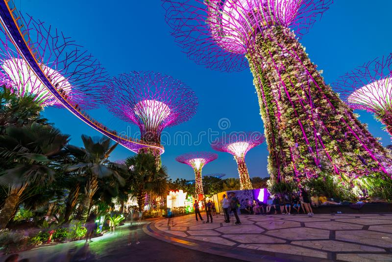 Διάσημοι τουριστικοί προορισμοί της Σιγκαπούρης Garden By The Bay τουριστικό αξιοθέατο στοκ φωτογραφία