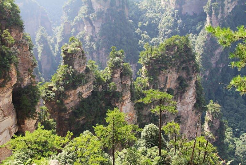 Διάσημο πάρκο εθνικών δρυμός Zhangjiajie στο επαρχία Hunan, Κίνα στοκ φωτογραφία