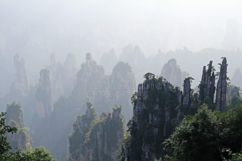 Διάσημο πάρκο εθνικών δρυμός Zhangjiajie στο επαρχία Hunan, Κίνα στοκ εικόνα με δικαίωμα ελεύθερης χρήσης