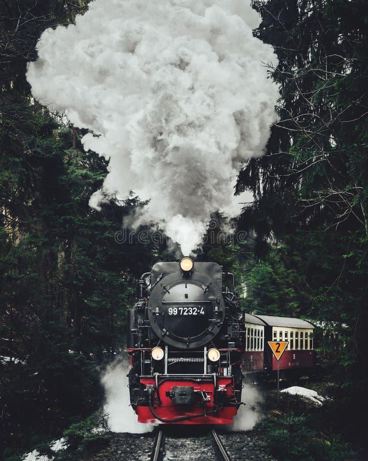 Διάσημο τραίνο επίσκεψης στην Ελβετία, ο παγετώνας σαφής μέσα στοκ εικόνες