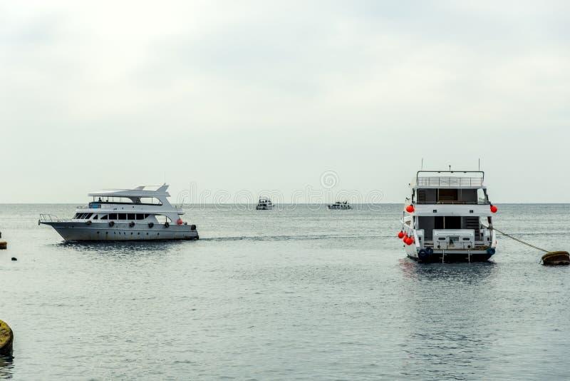 Διάφορα άσπρα γιοτ είναι στην μπλε θάλασσα στοκ εικόνα με δικαίωμα ελεύθερης χρήσης