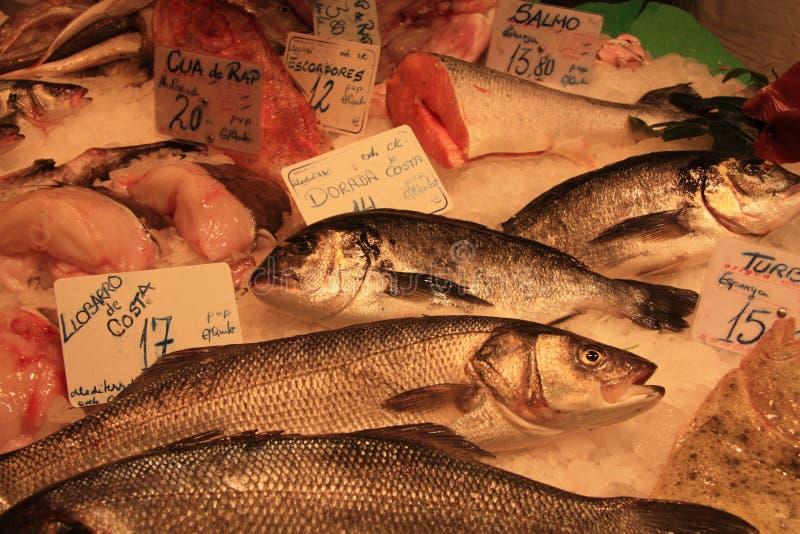 Διάφορα είδη των ψαριών στην αγορά ψαριών στοκ φωτογραφία με δικαίωμα ελεύθερης χρήσης