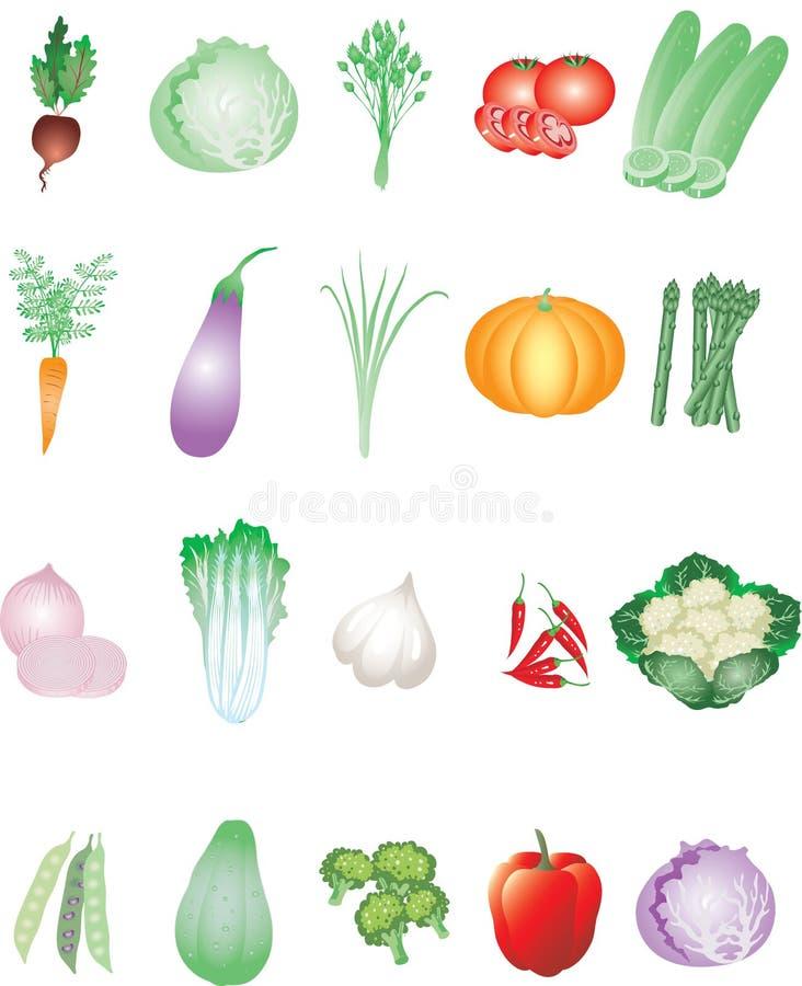Διάφορα λαχανικά από το τροπικό αγρόκτημα - διανυσματική απεικόνιση διανυσματική απεικόνιση