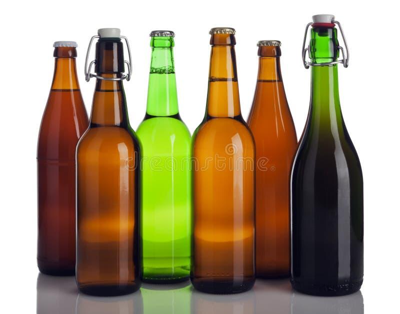 Download Διάφορα μπουκάλια μπύρας που απομονώνονται Στοκ Εικόνα - εικόνα από φως, κλειστός: 13182843