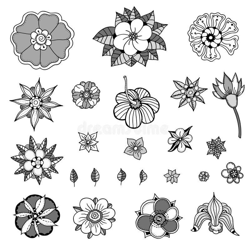 Διάφορα λουλούδια, φύλλα ελεύθερη απεικόνιση δικαιώματος
