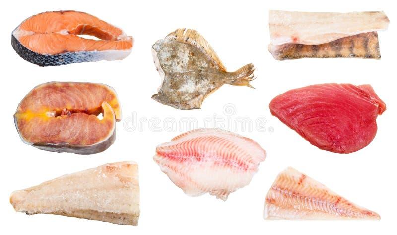 Διάφορες ακατέργαστες παγωμένες ψάρια, μπριζόλες και λωρίδες στοκ φωτογραφίες