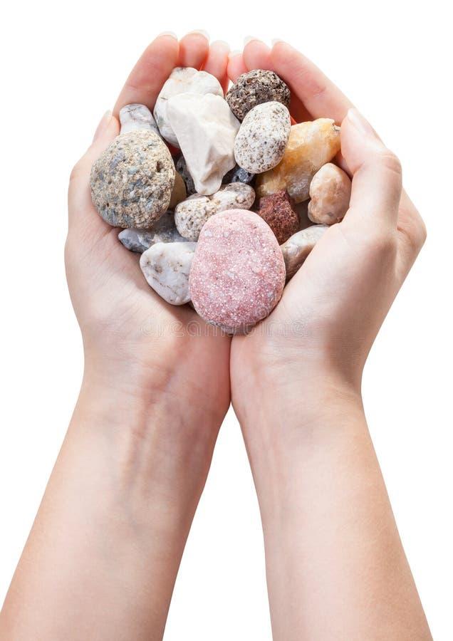 Διάφορες φυσικές πέτρες χαλικιών στη χούφτα που απομονώνεται στοκ εικόνες με δικαίωμα ελεύθερης χρήσης