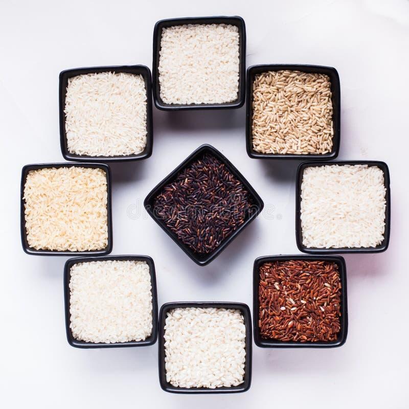 Διάφοροι τύποι ρυζιών στοκ φωτογραφίες