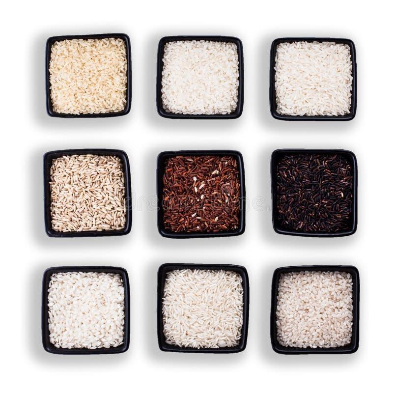 Διάφοροι τύποι ρυζιών στοκ φωτογραφία