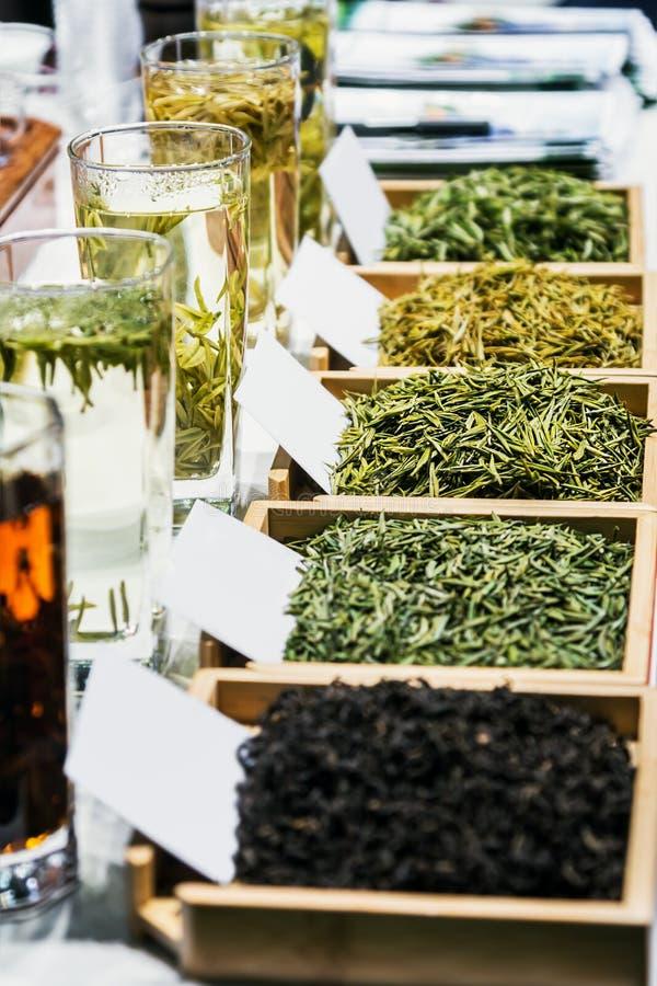 Διάφοροι τύποι τσαγιού από χαλαρά φύλλα σε ξηρή μορφή και παρασκευασμένο σε γυαλί στοκ εικόνα