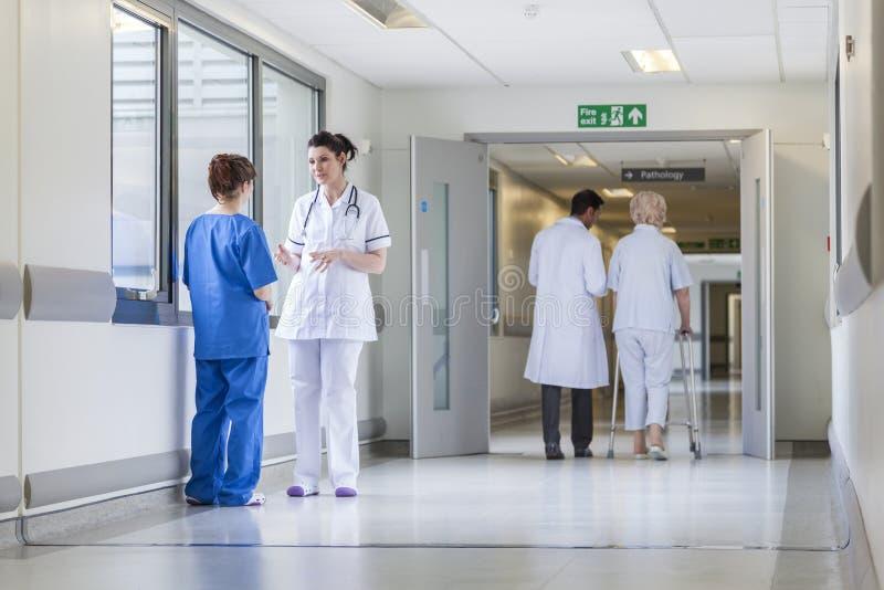 Διάδρομος νοσοκομείων νοσοκόμων γιατρών & ανώτερος θηλυκός ασθενής στοκ εικόνες