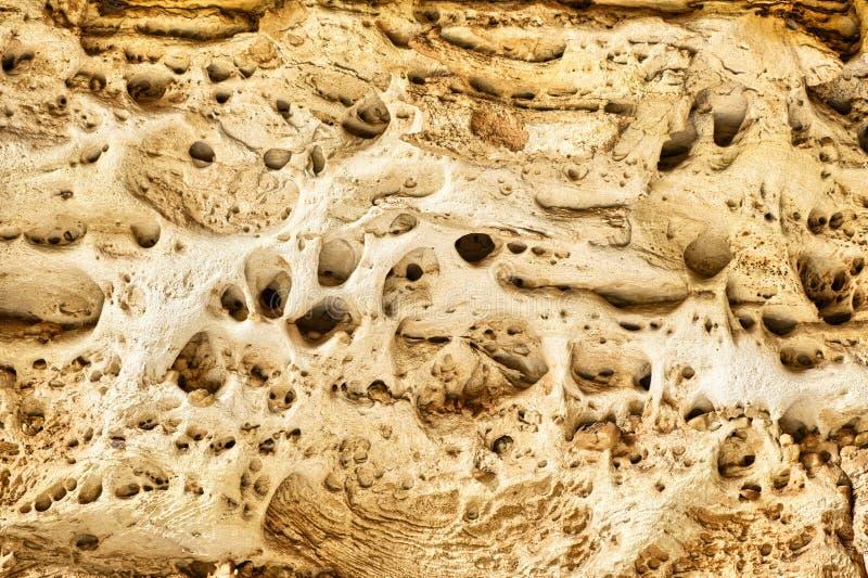 Διαβρωμένος ψαμμίτης στο φαράγγι καθεδρικών ναών στοκ εικόνες