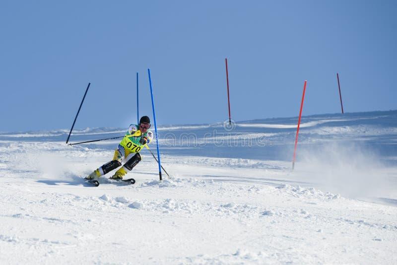 Διαγωνισμός σκι στοκ φωτογραφία