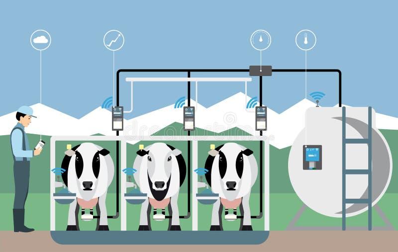 Διαδίκτυο των πραγμάτων στο γαλακτοκομικό αγρόκτημα απεικόνιση αποθεμάτων