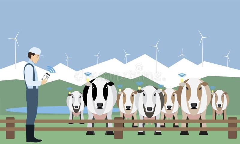 Διαδίκτυο των πραγμάτων στο γαλακτοκομικό αγρόκτημα διανυσματική απεικόνιση