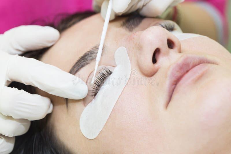 Διαδικασία για τις επεκτάσεις eyelash, eyelashes lamin στοκ εικόνα με δικαίωμα ελεύθερης χρήσης