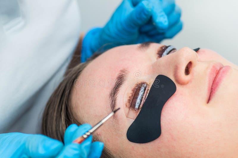 Διαδικασία ελασματοποίησης Eyelash Λέκιασμα, κατσάρωμα, τοποθέτηση σε στρώματα, ανελκυστήρας μαστιγίων Επέκταση Eyelash στοκ εικόνες