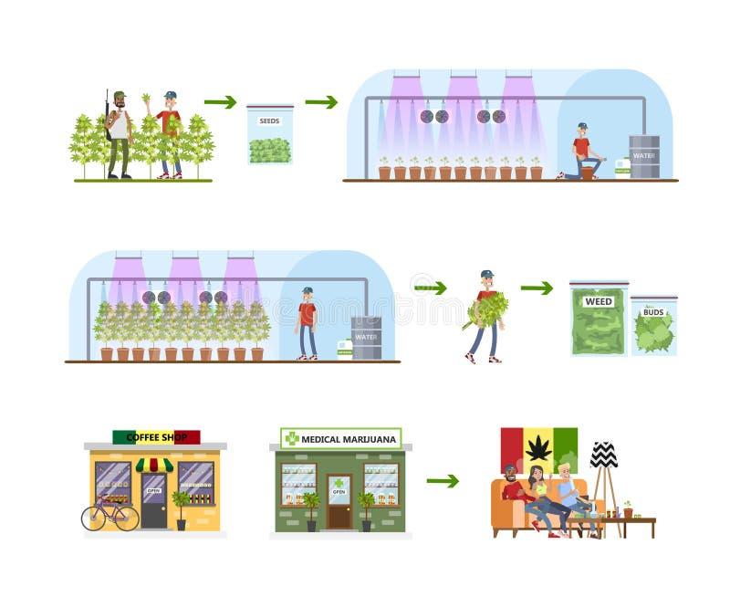 Διαδικασία παραγωγής ζιζανίων Από τη συγκομιδή στο κατάστημα διανυσματική απεικόνιση