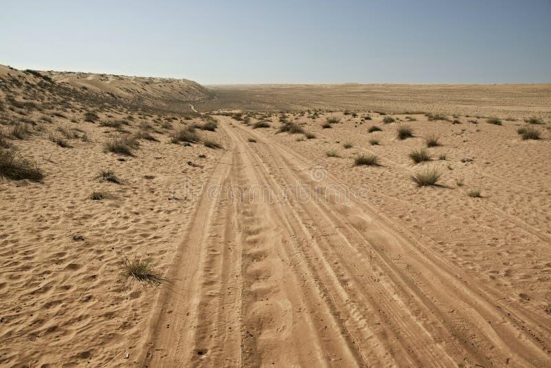 Διαδρομές ελαστικών αυτοκινήτου/ροδών μέσω των αμμόλοφων άμμου ερήμων στοκ φωτογραφίες