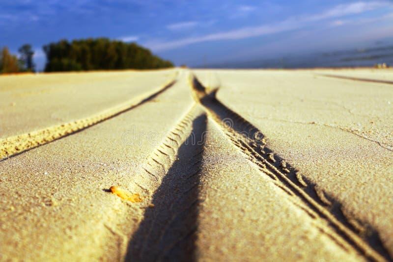 Διαδρομές ελαστικών αυτοκινήτου στην άμμο στην παραλία στοκ εικόνες με δικαίωμα ελεύθερης χρήσης