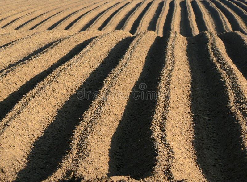 διαδρομές καλλιεργήσιμου εδάφους στοκ εικόνα
