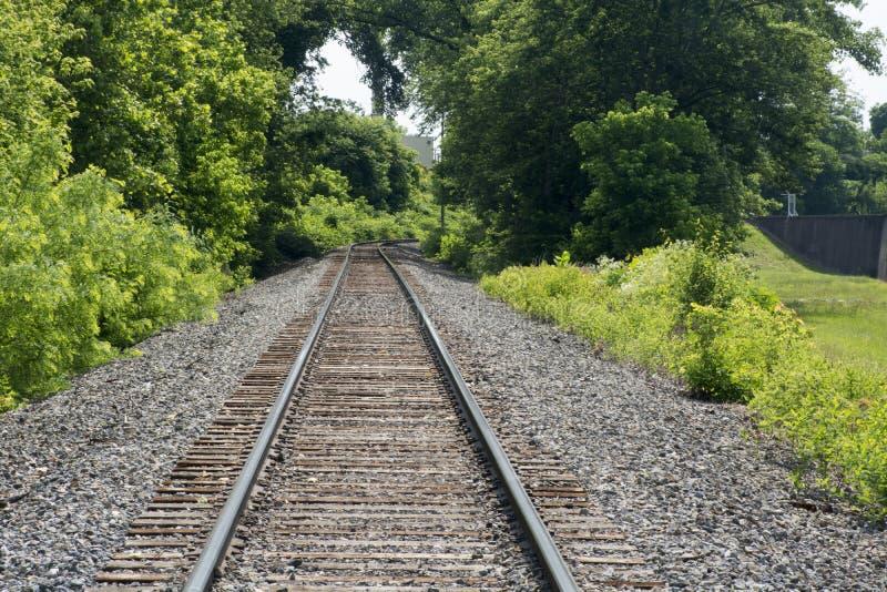 Διαδρομές σιδηροδρόμου μέσω των σχηματισμένων αψίδα δέντρων στοκ φωτογραφία