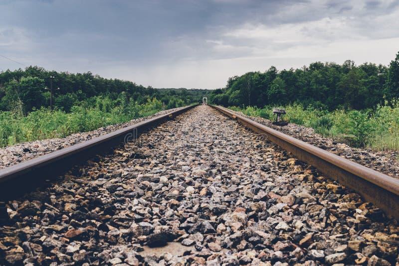 Διαδρομές σιδηροδρόμων στα ξύλα στοκ φωτογραφία
