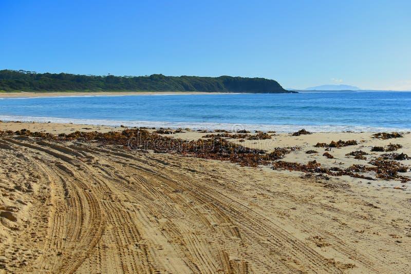 Διαδρομές τετράτροχης κίνησης σε μια παραλία στοκ εικόνες με δικαίωμα ελεύθερης χρήσης