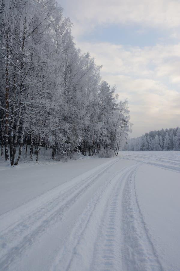 Διαδρομή από το όχημα για το χιόνι στα πλαίσια των χιονισμένων δέντρων στοκ εικόνες με δικαίωμα ελεύθερης χρήσης