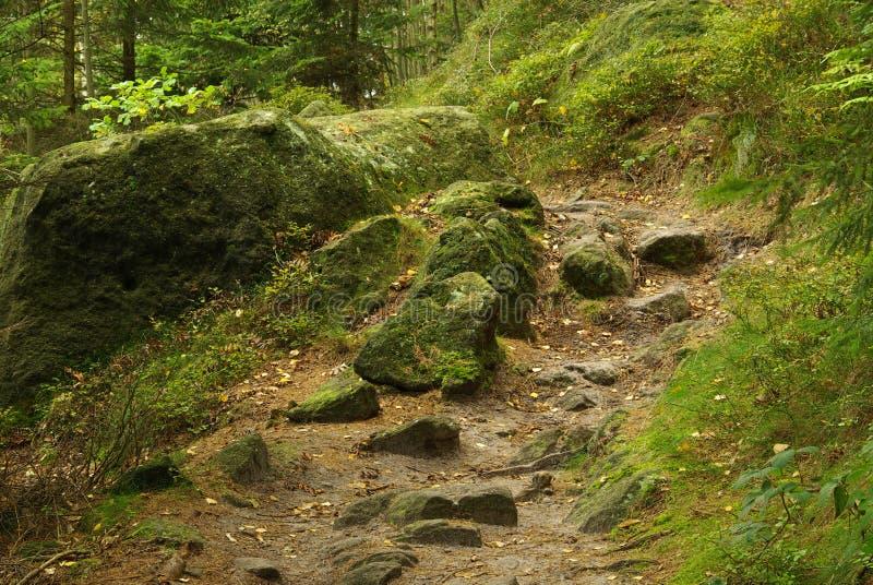 Διαδρομή Hirschgrundweg 12 πεζοπορίας στοκ φωτογραφίες με δικαίωμα ελεύθερης χρήσης