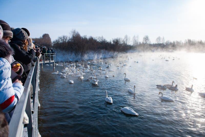 Διακοπές zimovka Altaiskaya - η πρώτη ημέρα του χειμώνα στοκ εικόνες