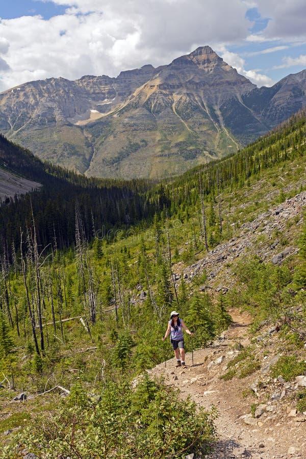 Διακοπή για να απολαμβάνει τη θέα σχετικά με ένα ίχνος βουνών στοκ εικόνα με δικαίωμα ελεύθερης χρήσης