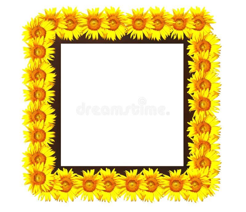 διακοσμημένος photoframe ηλίανθ&omicron στοκ φωτογραφίες με δικαίωμα ελεύθερης χρήσης