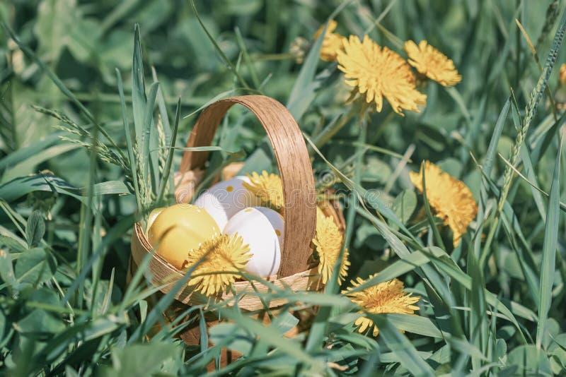Διακοσμητικά αυγά Πάσχας Coloful σε ένα μικροσκοπικό αγροτικό ξύλινο καλάθι, κίτρινο ανθίζοντας λιβάδι πικραλίδων την άνοιξη στοκ εικόνα με δικαίωμα ελεύθερης χρήσης