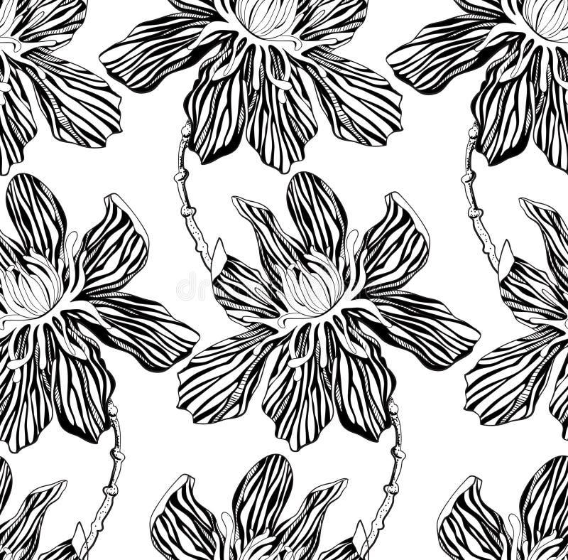 Διακοσμητικά γραφικά λουλούδια απεικόνιση αποθεμάτων