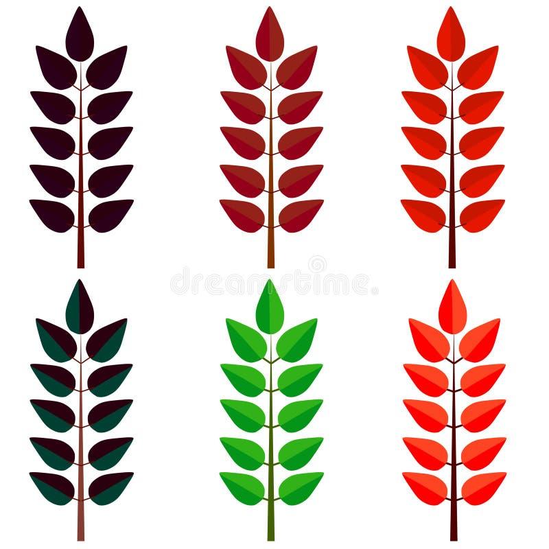 Διακοσμητικά φύλλα, σύνολο Φθινόπωρο, έννοια πτώσης φύλλων Διάνυσμα κινούμενων σχεδίων διανυσματική απεικόνιση