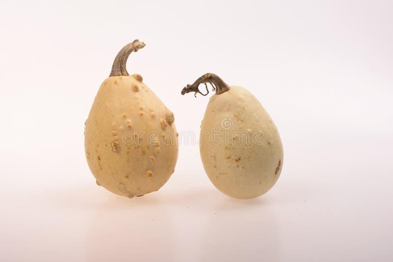Διακοσμητικά calabashes στοκ εικόνα