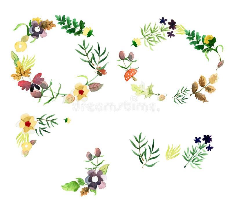 Διακοσμητικά floral πλαίσια φθινοπώρου με τα πράσινα φύλλα και λουλούδια στο ύφος watercolor Τέλεια στοιχεία σχεδίου για εκτός απ απεικόνιση αποθεμάτων
