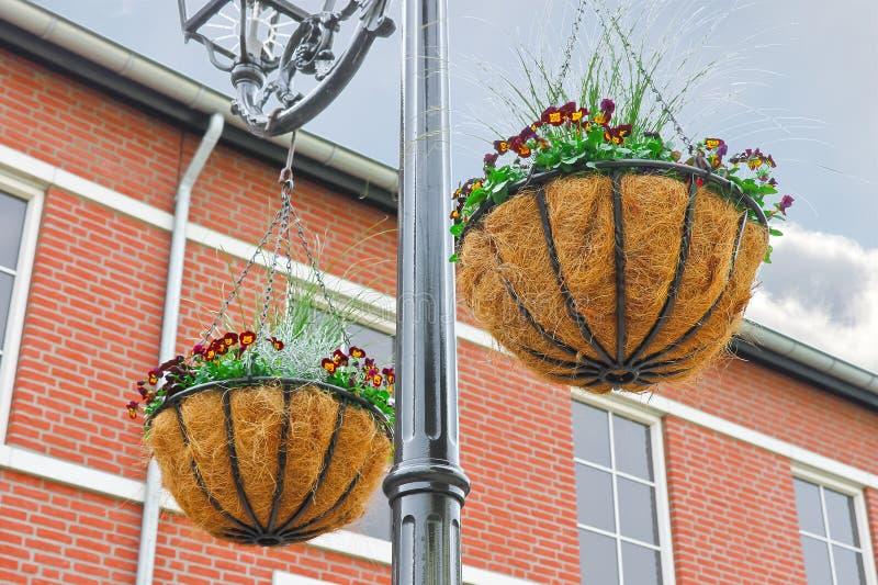 Διακοσμητικά flowerpots στοκ εικόνες