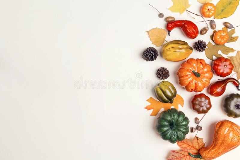 Διακοσμητικές κολοκύθες και πεσμένα φύλλα επάνω στο μπεζ υπόβαθρο Κοβάλτιο στοκ φωτογραφία με δικαίωμα ελεύθερης χρήσης