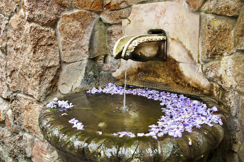 Διακοσμητική πηγή με τα λουλούδια. στοκ εικόνα με δικαίωμα ελεύθερης χρήσης