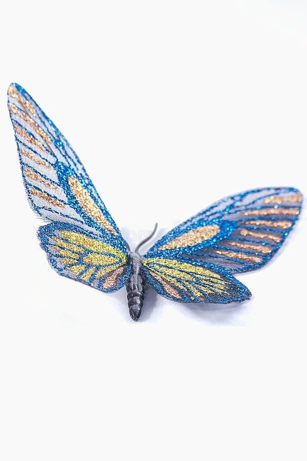Διακοσμητικοί μπλε και κίτρινος πεταλούδων που απομονώνεται σε ένα άσπρο backgro στοκ εικόνα